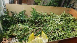 東京都板橋区の事業ゴミ回収「生木と雑草」